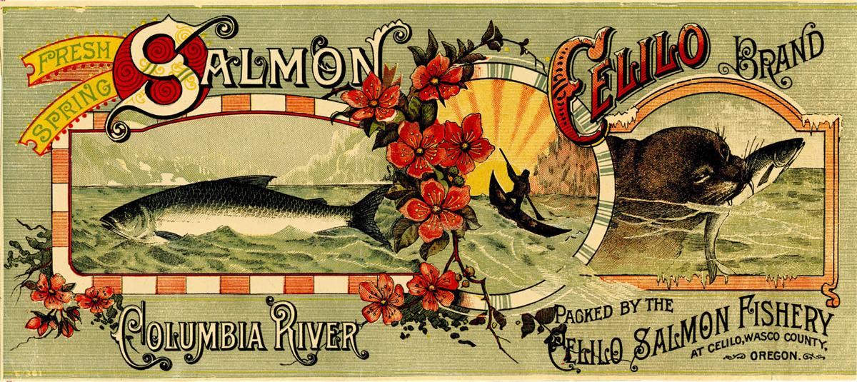 Celilo salmon can label