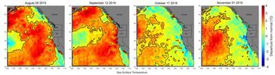Marine heat wave