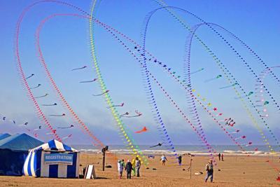 Kite Fest 2017 takes flight