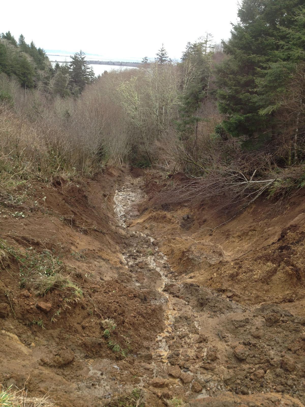 Landslide impacts hillside above Baker Bay in Ilwaco