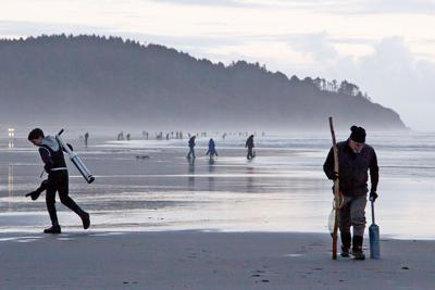 WDFW approves four-day razor clam dig beginning Oct. 25