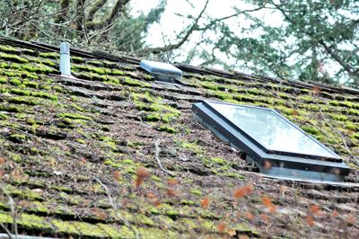 Maintaining A Moss Free Roof Takes Some Effort Life Chinookobserver Com