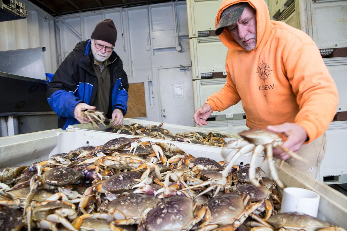 181226_co_commercial fishing_dungeness2.jpg