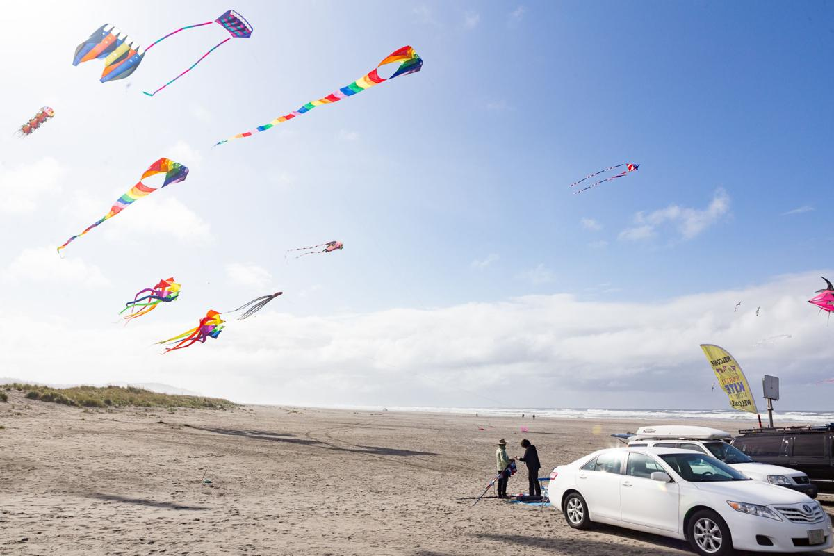 Kite flyers meet
