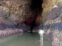 Waikiki sea cave
