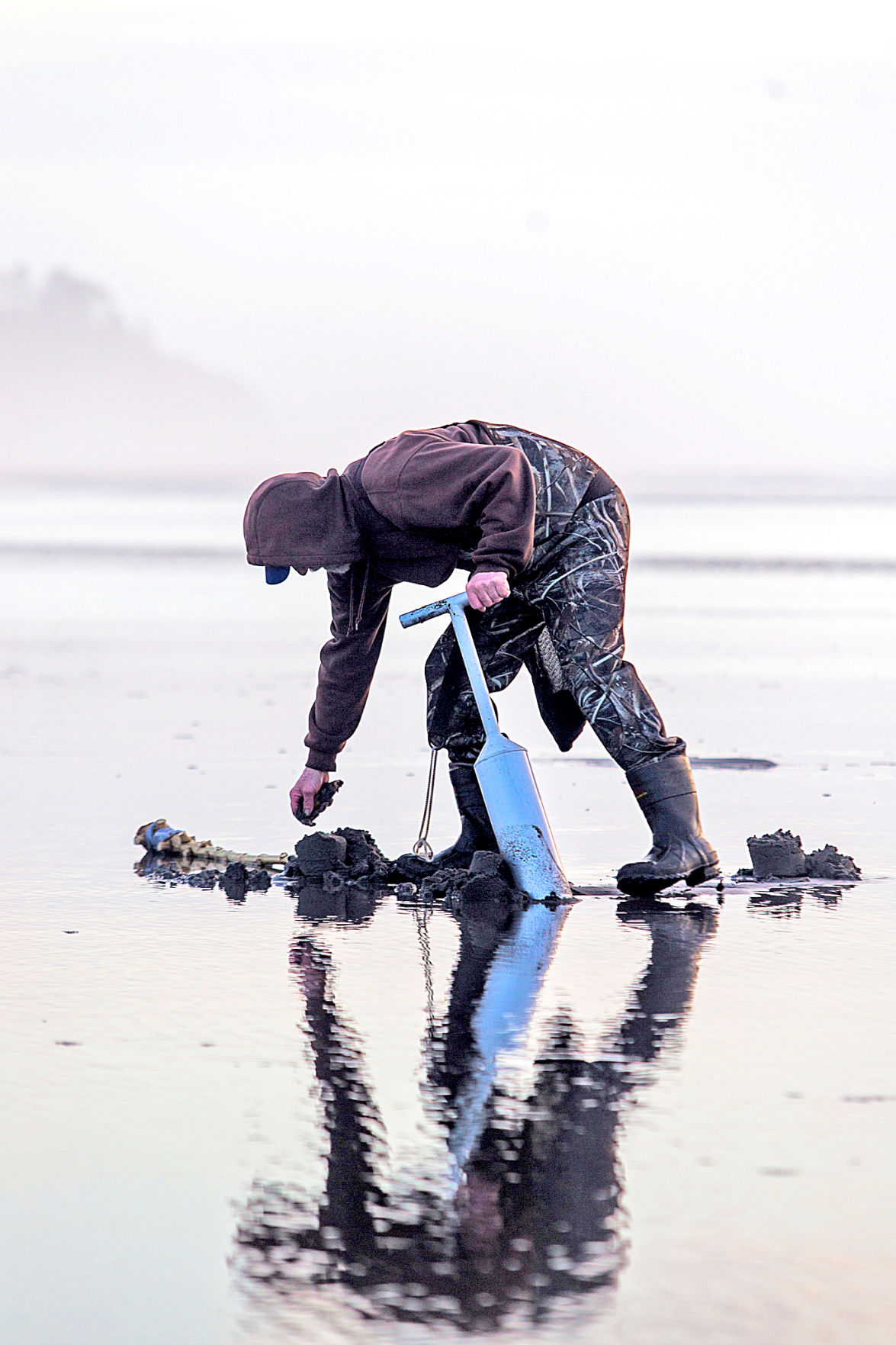 1911207_co_news_digger collects clam.jpg