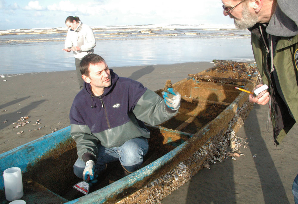 Small Japanese boat washes ashore in LB