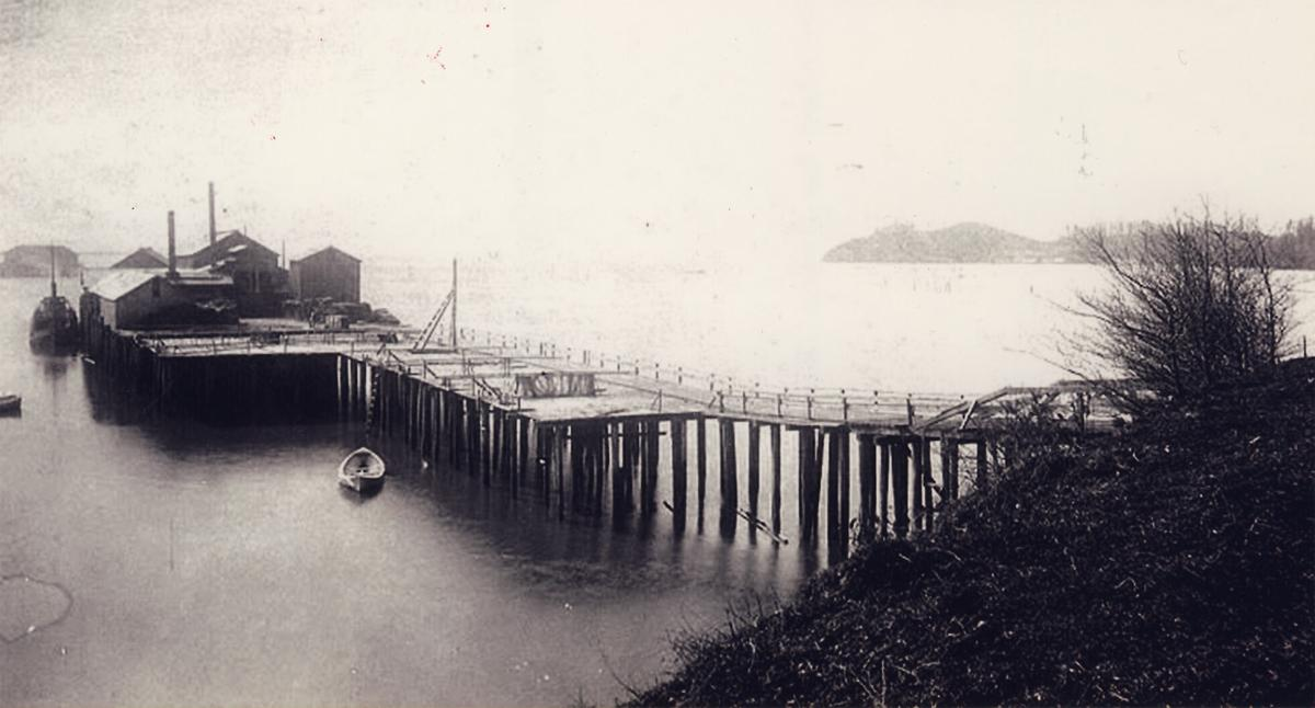Seaborg Cannery
