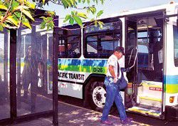 The little bus system that could: Pacific Transit System