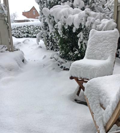 Sunny patio?
