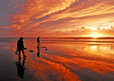 Razor clamming OK'd for mid-March