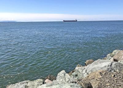 Shipenters the Columbia