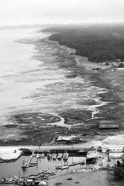 Protecting Willapa: 'Ugly' rocks create a beautiful bay