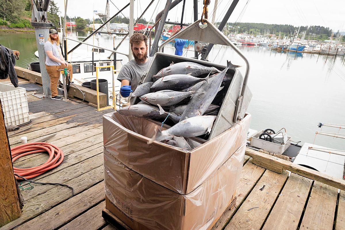 Martin offloads tuna