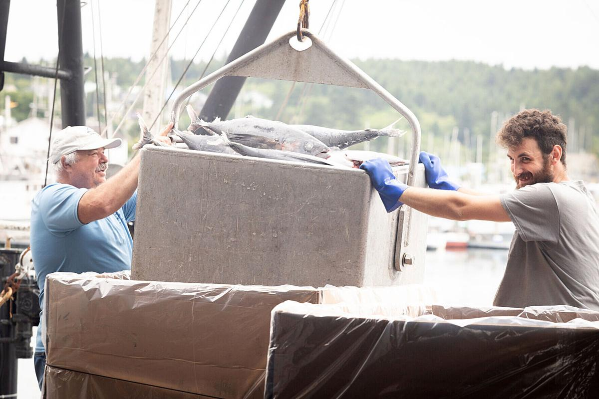 Moore and Martin offload tuna