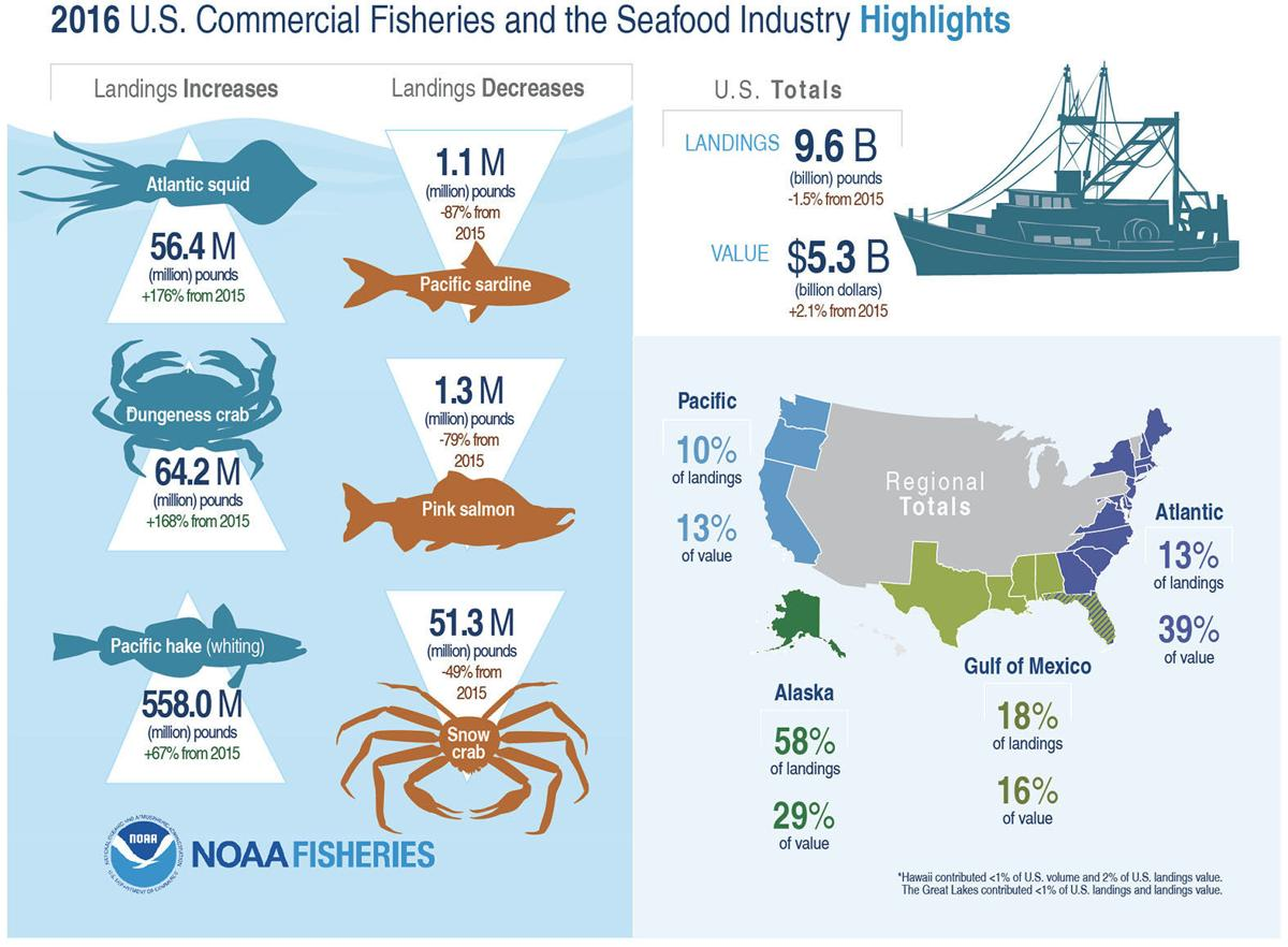 WA fish landings up 52% last year | South County News