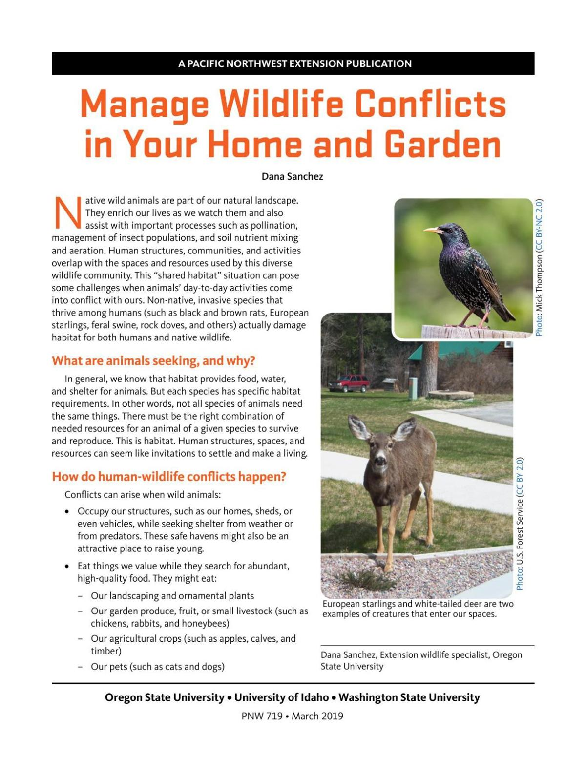 Manage Wildlife Conflicts in Your Home and Garden