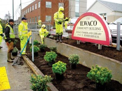 Landscaping turns Ilwaco Community Building into a hardy landmark