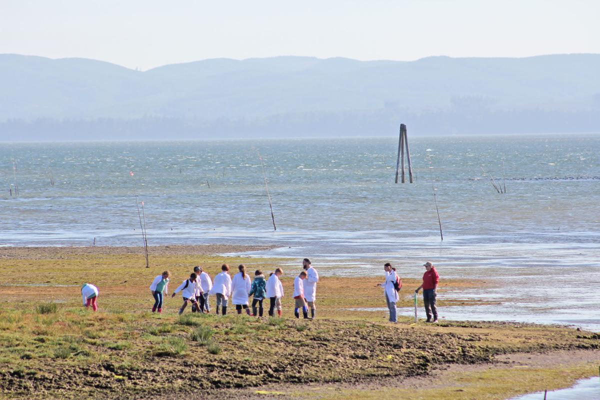 Science students on Willapa Bay