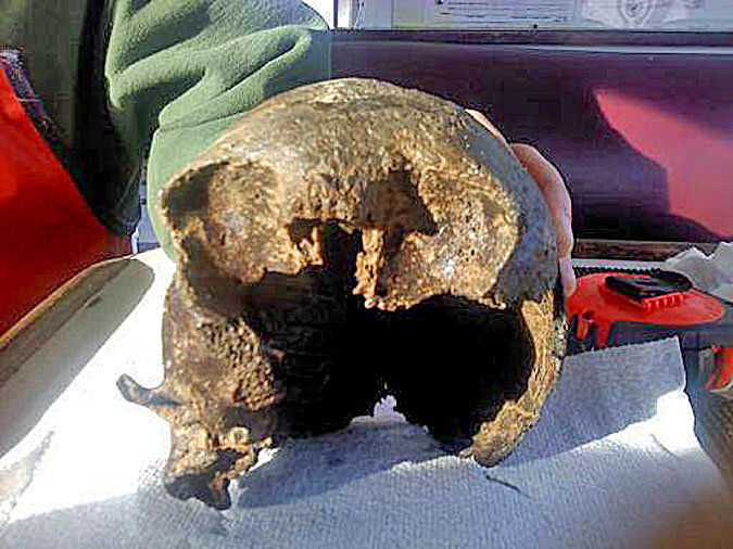 State expert begins examining ancient skull found in crab pot