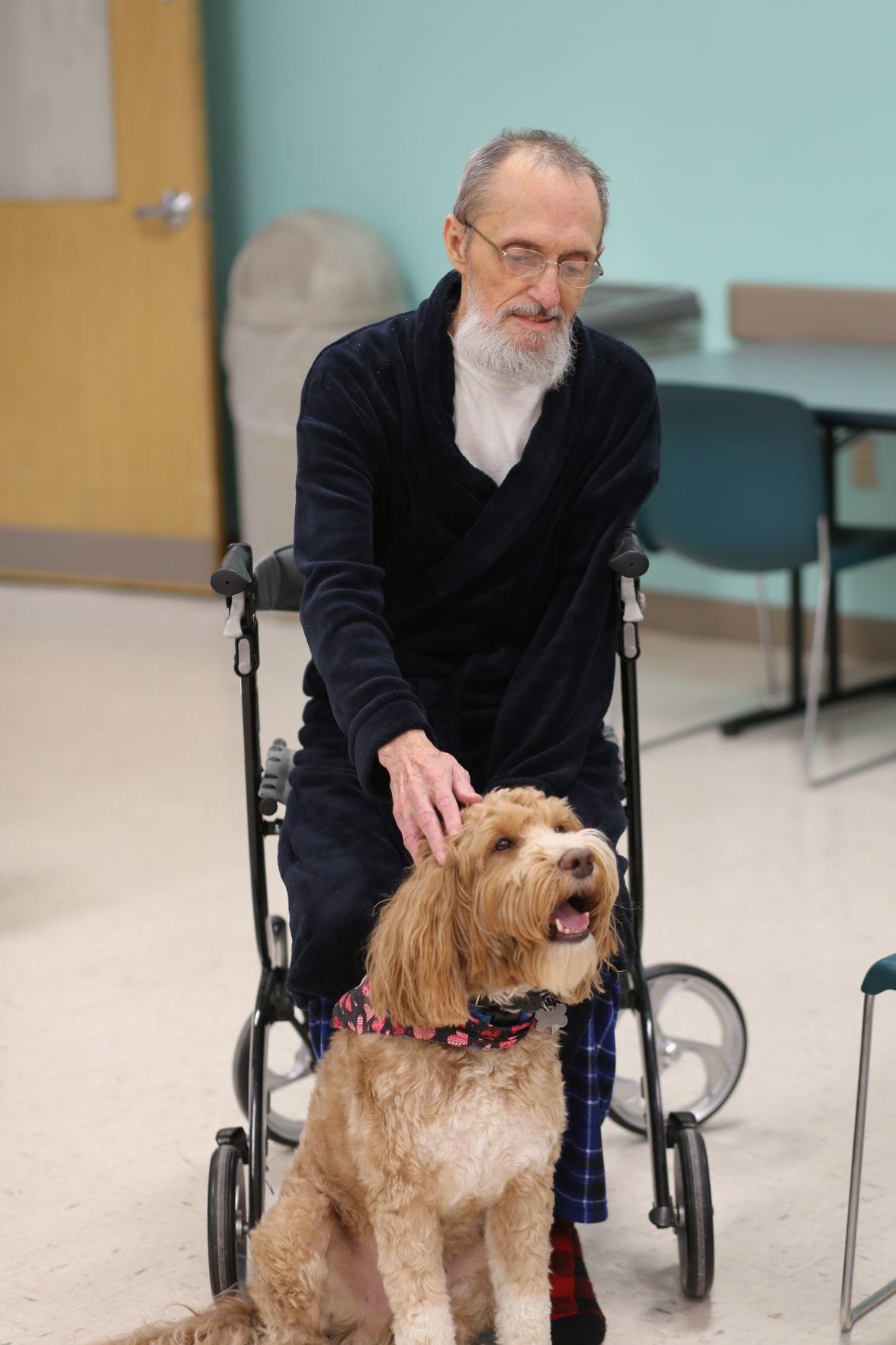 Veterans get some puppy love