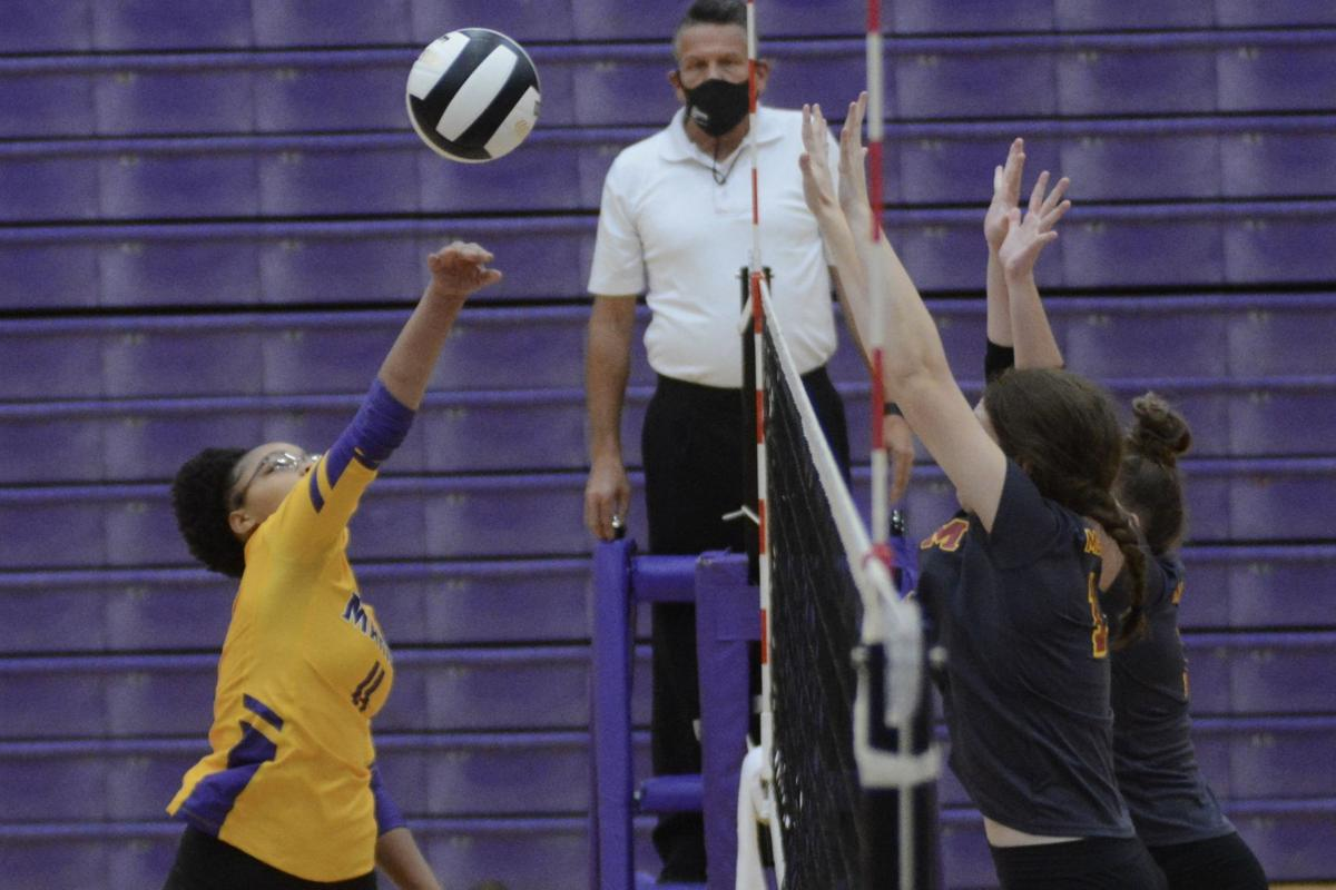 volleyball sectionals (display)