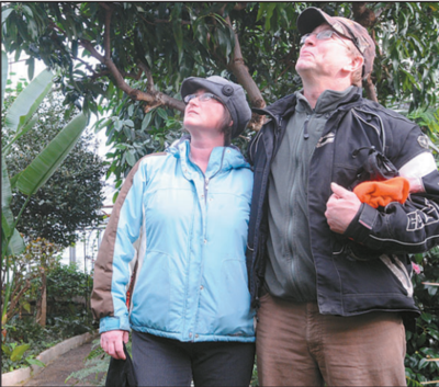 Susan Mehaffey and Allen Lewkoski take in the conservatory on Sunday.