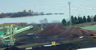 Biomass pellets are piled next to newly seeded grass where coal was previously stored at the Thunder Bay generating station.