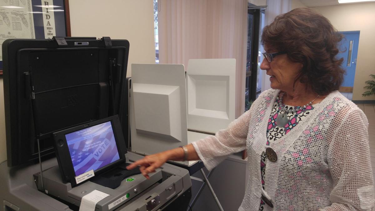 Susan Gill-voting machine