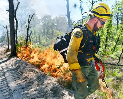 Florida's hottest job: Fighting fire with fire | Local News