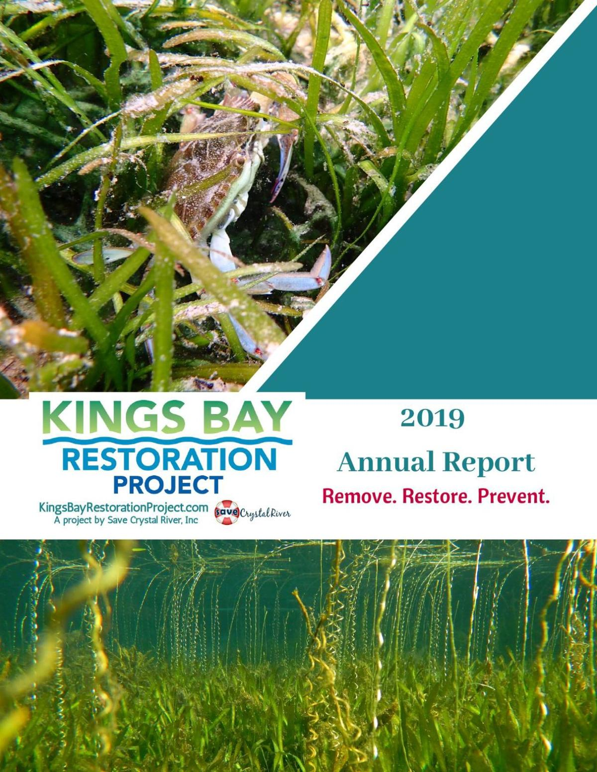 King's Bay Restoration Project 2019-20 Annual Report