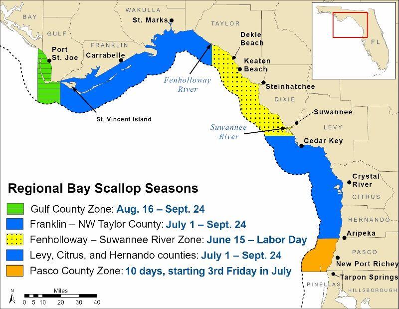 Scallop Season -- FWC.jpg