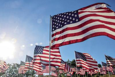 County Offices closed for Veterans Day - Flag