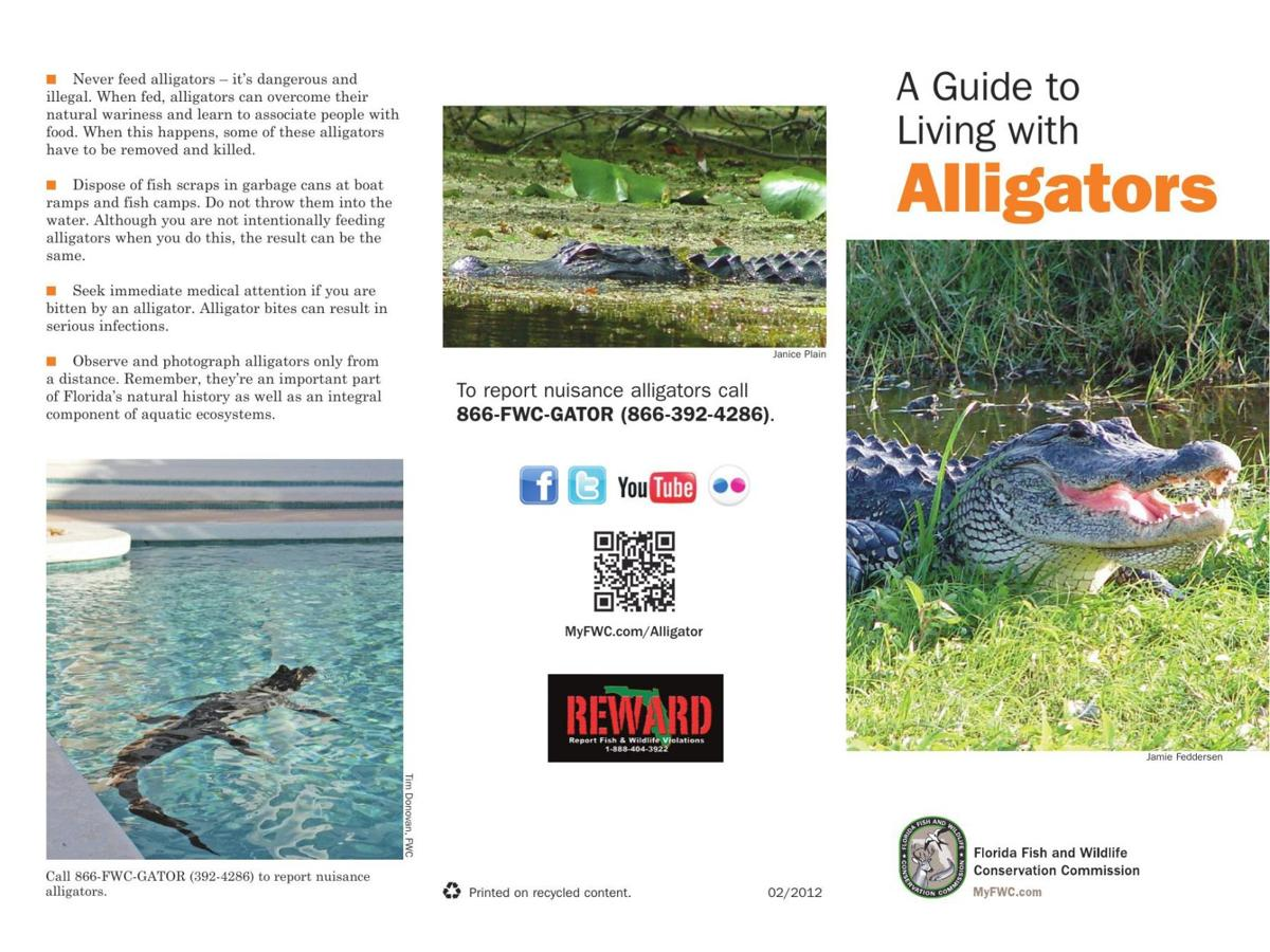 FWC Living With Alligators
