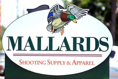 Mallards 8.jpg