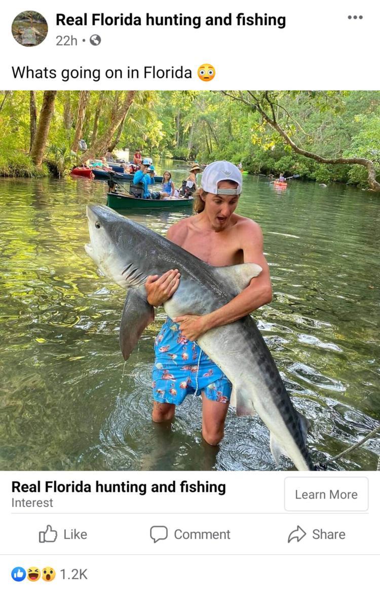 historias locas de la Florida