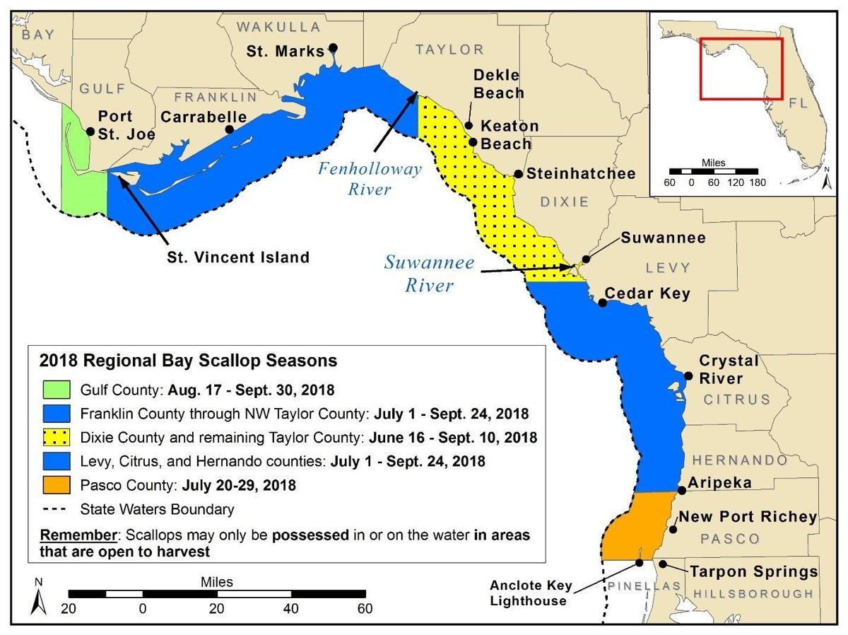 Scallop Season Is Almost Here You Ready Local News Wiring Instructions For Edward Jones