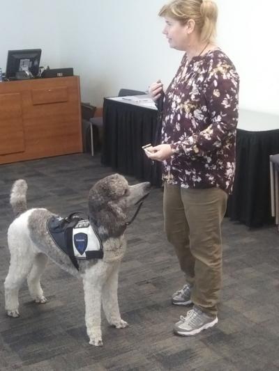 Service dog Rilee and handler