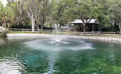 Little Springs Park Cleanup Completed