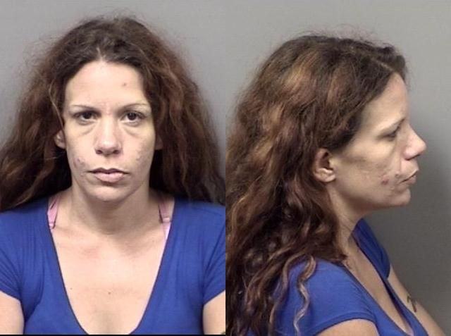 Citrus County Mugshots July 16, 2018 | Crime & Courts