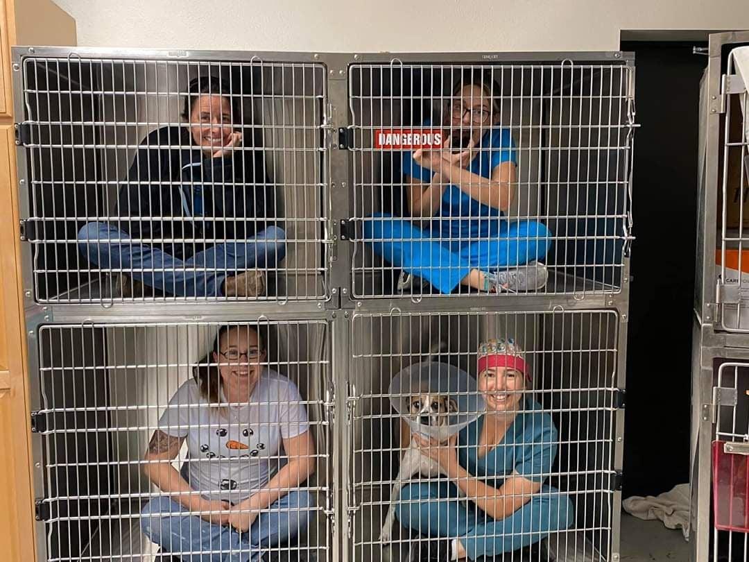 Citrus County Animal Services staff