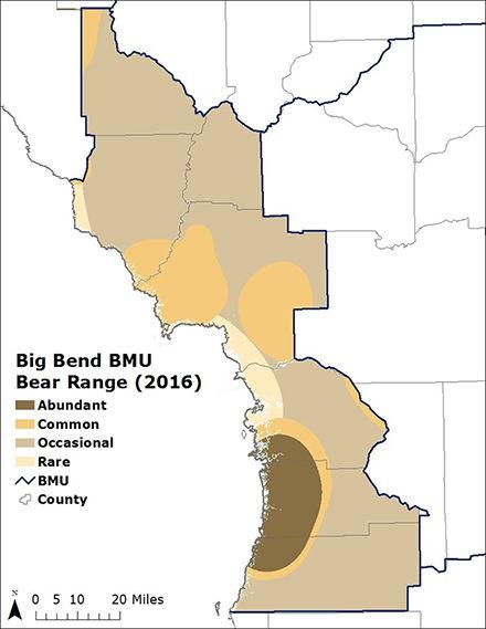 Black Bear Big Bend BMU Map