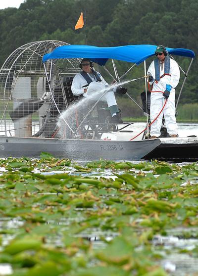 Aquatic spraying Glyphosate