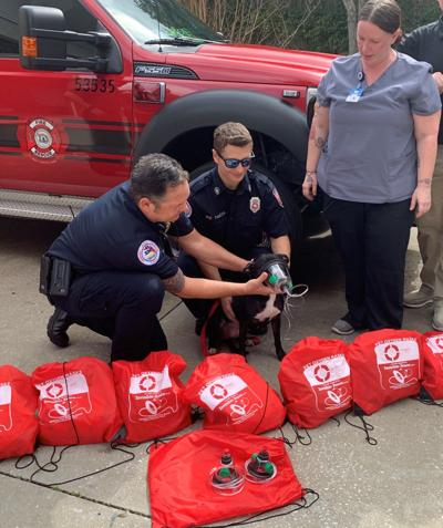 Citrus County Fire Rescue get pet masks