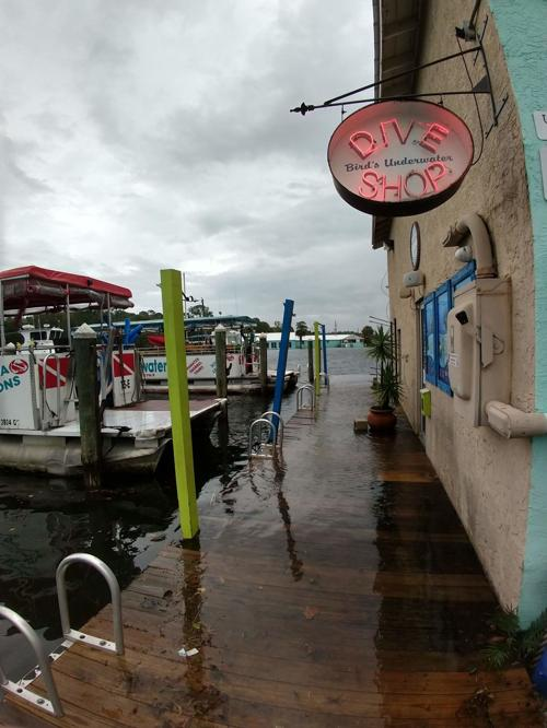 Bay laps at dock at Bird's Underwater | Local News