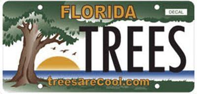 0823 license plate.jpg