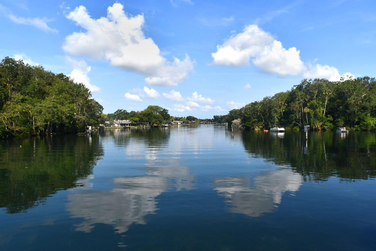 Homosassa River headwaters
