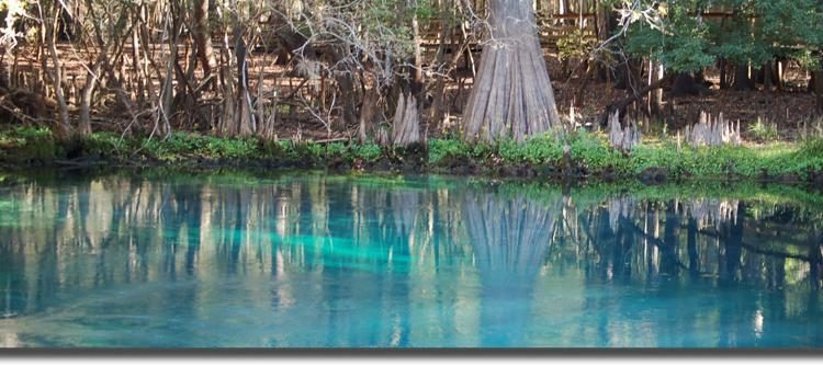 Save our Waters Week Sponsored by Keep Citrus County Beautiful