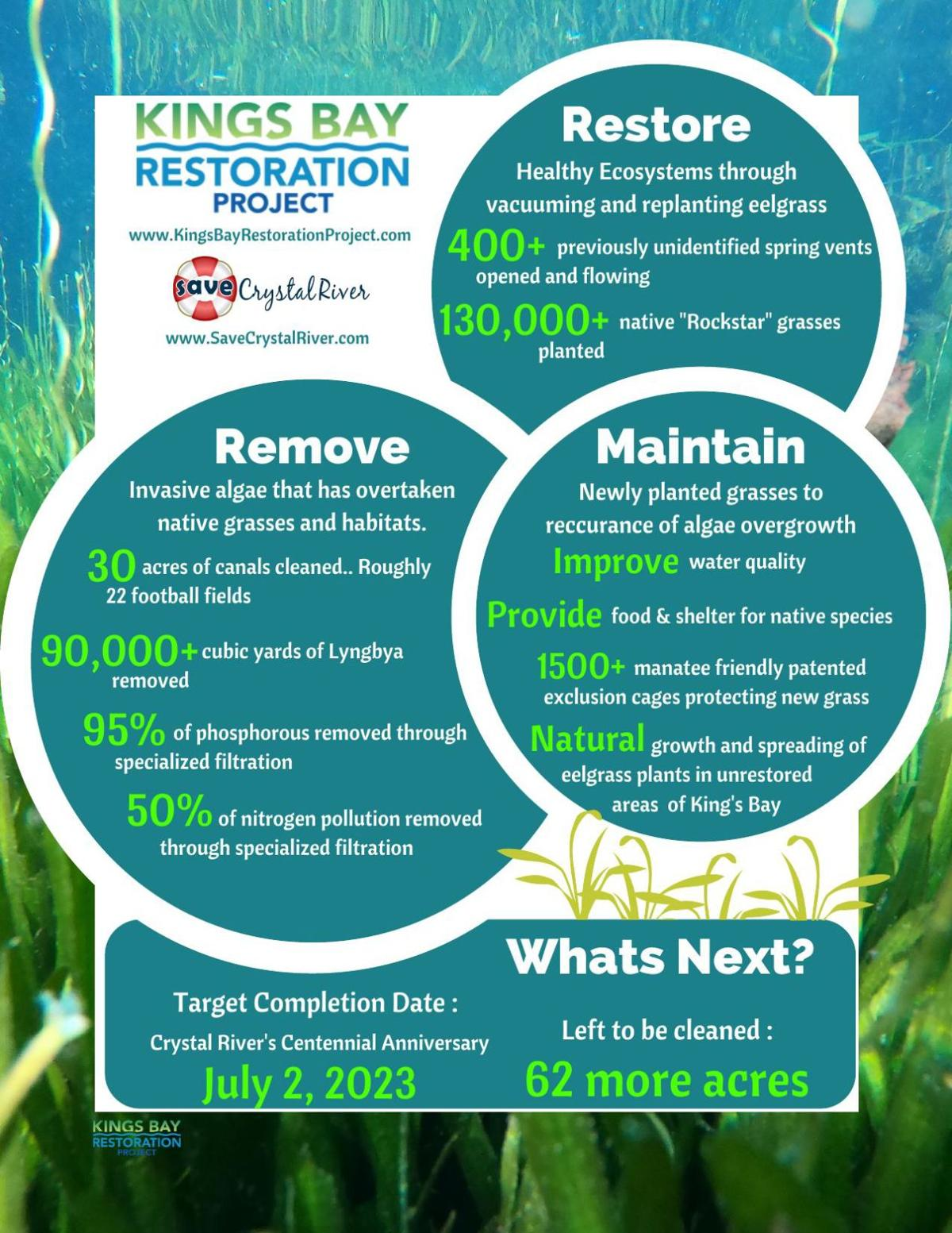 King's Bay Restoration Project Info Graphic