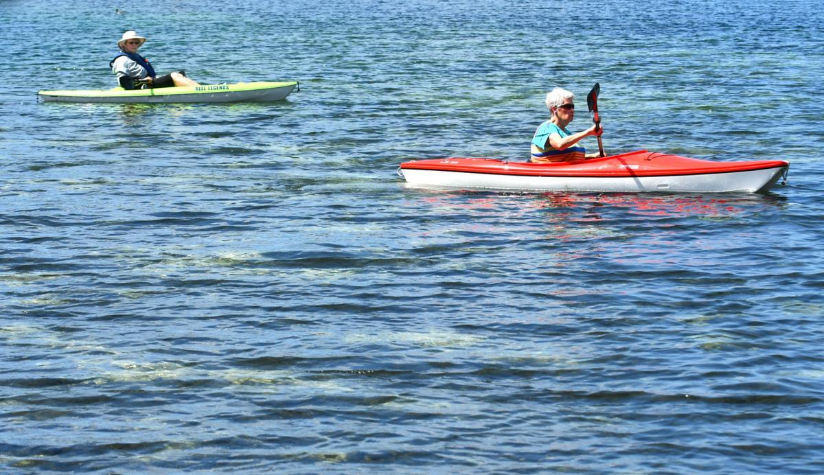 Senior paddlers (File)